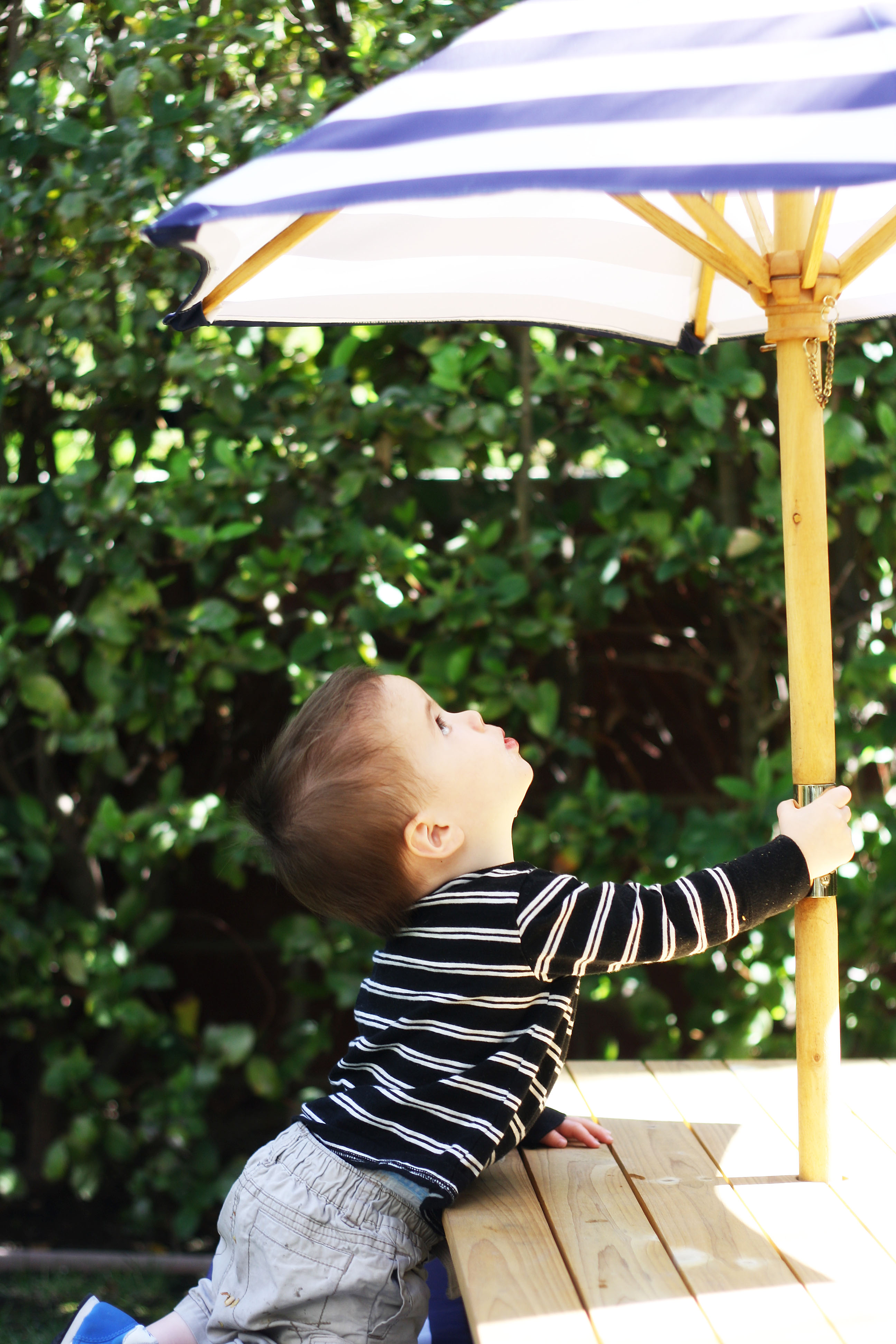 shaneumbrella