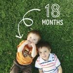 Shane 18 months